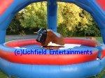 Bucking Bronco for hire